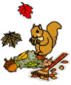 squirrel and fall activities